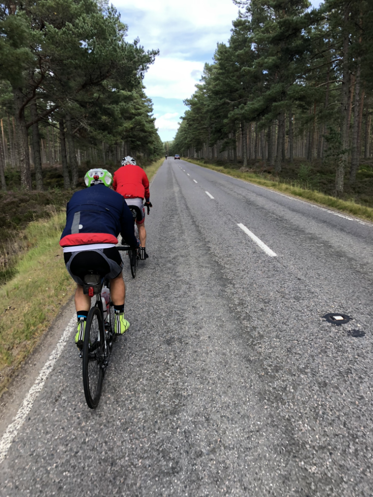 cyclists in a group on a road lined with trees