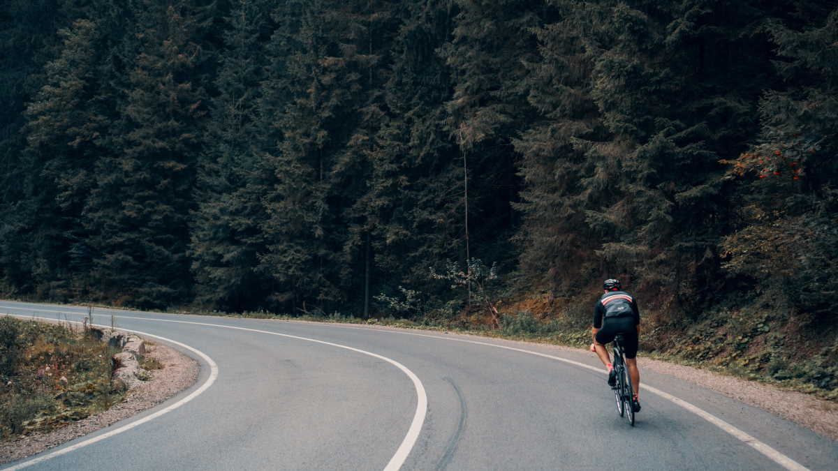 Man cycling alone on road through forest
