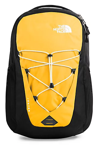 Jestor Backpack from The North Face